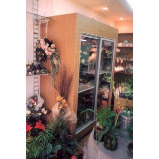 Ψυγείο ανθοπωλείου 1,60Χ75Χ205 (2 κρυστάλλινες πόρτες)
