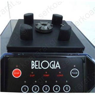 Επαγγελματικό μπλέντερ BL-6MC